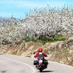 El Valle del Jerte en flor: De Candelario a El Piornal