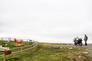 Monumento a la Vaca Pasiega
