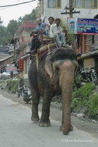 Un vehículo un tanto especial Himalaya